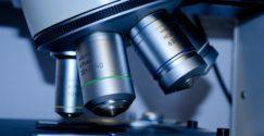 Características, etapas y reglas del método científico